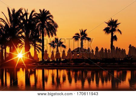 Sunset and palms, beach in resort