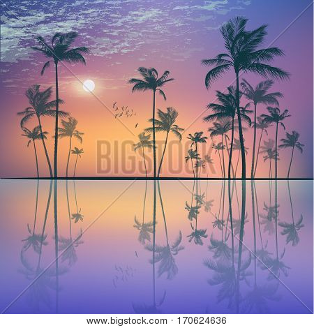 Landscape With  Tropical Palm Trees  At Sunset Or Moonlight, Wit