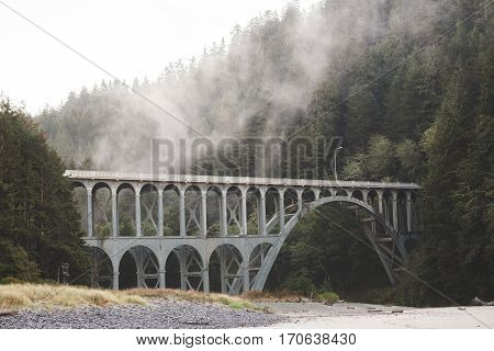 Gothic style bridge in foggy forest mountains of the Oregon coast. Heceta Head Lighthouse area Oregon USA.