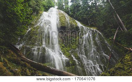 Beautiful waterfall in lush forest setting. Proxy Falls in Oregon, USA.