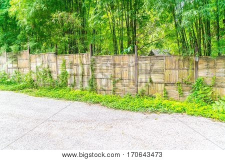 Bamboo fence with green leaves