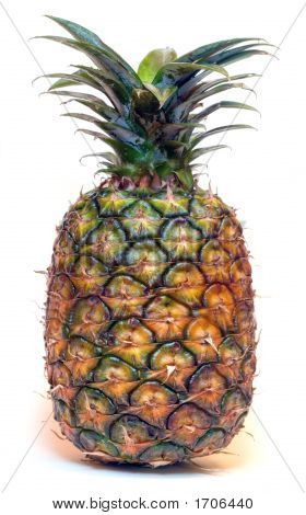 Big Pineapple On White 20 Mpx