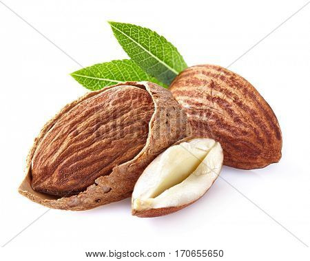 Almonds with leaves in closeup