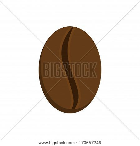 Grain Coffee Isolated. Raw Grains Of Coffee Tree