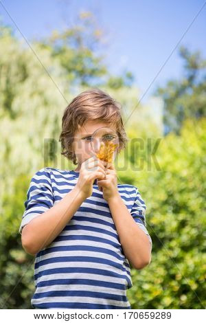 Portrait of cute boy looking a leaf with magnifying glasses on a park