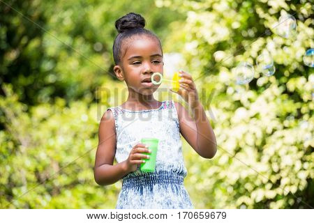Little girl making bubble with bubble wand at park