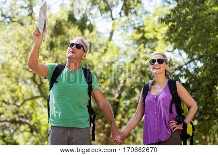 Couple pointing and holding hands during a hike on the wood