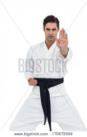 Portrait of fighter performing karate stance on white background