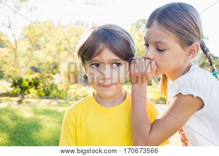 Girl telling a secret in the ear of a little boy in a park on a sunny day