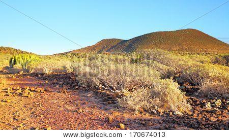 Panoramic view of desert area on Tenerife Island, Canaries