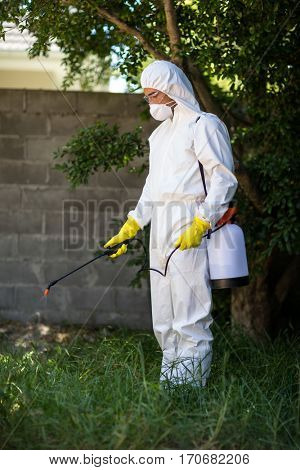 Man spraying insecticide on grass in lawn