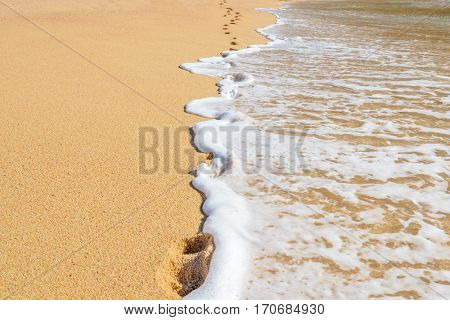 Footprints on the beautiful ocean sand. Set of six pictures showing ocean waves in different stages over footprints. Cabo San Lucas. Mexico.