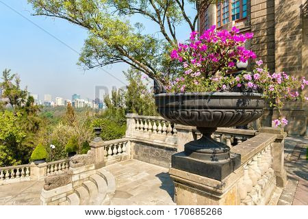 MEXICO CITY-DECEMBER 27,2016 : Gardens at Chapultepec Castle in Mexico City