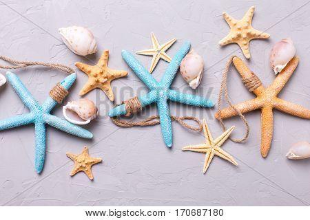 Marine items on grey tetured slate background. Sea objects. Selective focus.