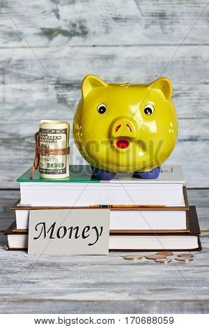 Piggy bank, dollars and books. Invest money in your education.