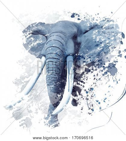 Digital Painting of  Elephant Portrait