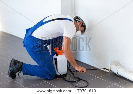 Manual worker spraying insecticide on pipe against wall