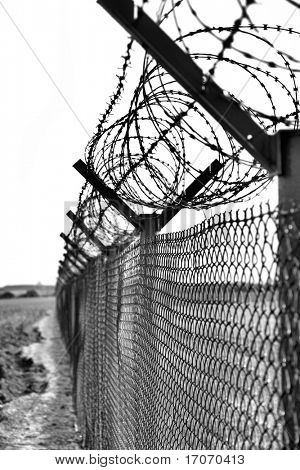Fence with a barbed wire