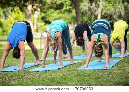 Fitness class practicing yoga in the park