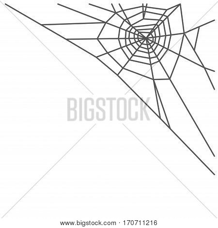 Spider web isolated on white background. Vector illustration