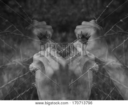 Lots of tortured hands grasping desperately barbed wire on black and white background poster