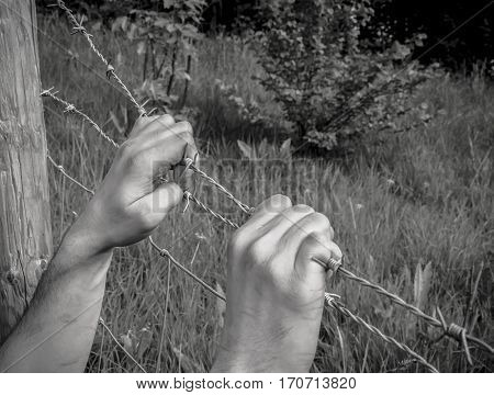 tortured hands grasping desperately barbed wire on black and white background