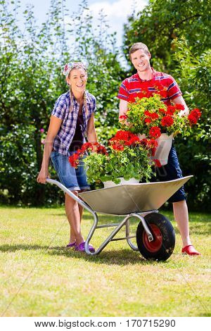 Couple in garden with barrow and flowers