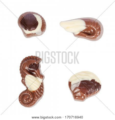 Pack, set or collection of belgian bonbons shaped as seashells isolated on white background
