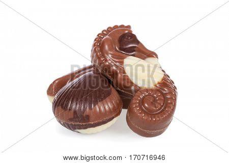 Belgian bonbons shaped as seashells isolated on white background