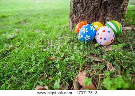 Painted Easter eggs hidden on the grass behind a tree trunk, ready for the easter egg hunt traditional play game