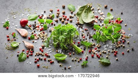 Herbs and spices on a black background