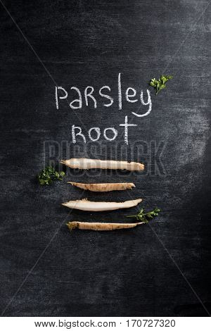 Top view image of parsley root over dark chalkboard background.