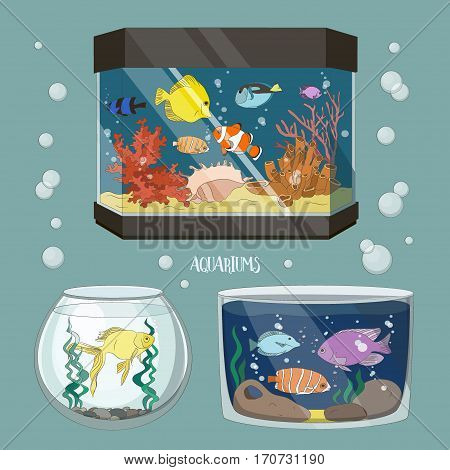 Glass Aquarium Set Different Form for Interior Home. Set of Fish and blue water.
