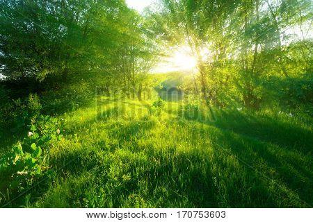 Morning landscape with sunrise over river