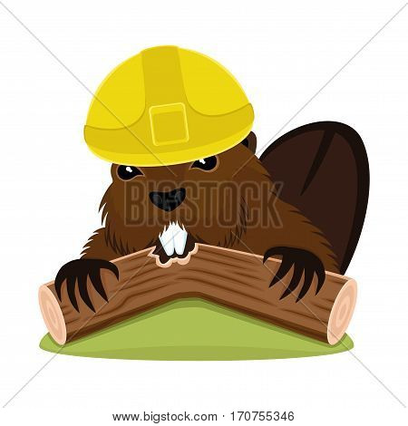 Beaver in the construction helmet on a white background.