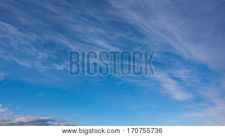 sky landscape with  light clouds