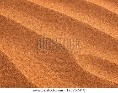 Sand Dunes texture