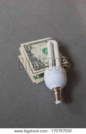 Energy saver tube light bulb with screw in base with two 1 dollar bills attached on grey background, energy saving concept