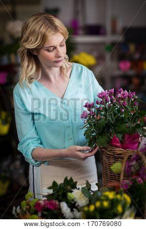 Female florist arranging flowers in basket at flower shop