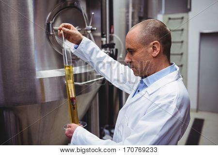 Manufacturer examining beer in test tube at brewery