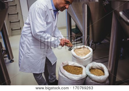 High angle view of manufacturer examining barley by storage tank at brewery