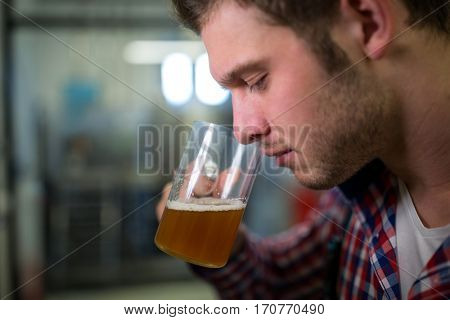 Close-up of Brewer smelling beer at brewery factory