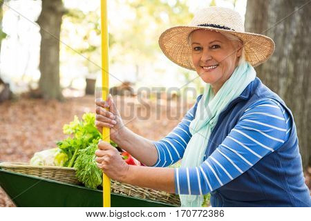 Portrait of confident mature female gardener with tool and wheelbarrow at garden