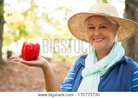 Portrait of happy mature female gardener with red bell peppers at garden