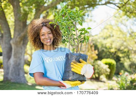 Portrait of volunteer woman holding plant in park