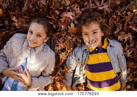 High angle portrait of smiling siblings lying on autumn leaves at park