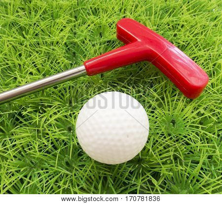 Red Putter On The Grass With The Ball