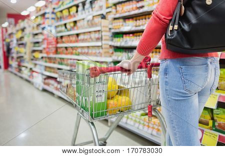 Rear view of woman shopping on a grocery