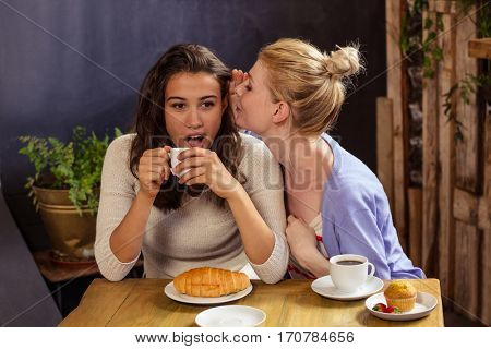 Woman telling secret to her friend in the cafe