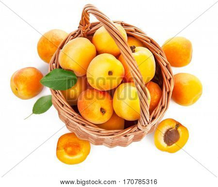 Fresh apricot with green leaf in wicker basket still life of fruits. Isolated on white background and copyspace top view.